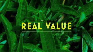 ערך אמיתי קאבר של צמחים